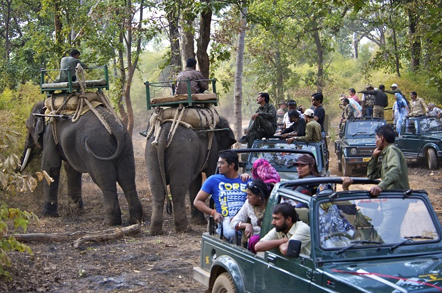 corbett-safari